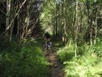 Mountainbikers kunnen een speciaal arrangement krijgen