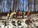 Ook in de winter zijn er diverse activiteiten mogelijk