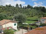 Veduta dal tetto della collina di olivi vicina