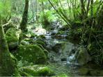 Parco della Fusola, in loco, dove potersi rinfrescare e godere della natura