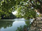 la Fontaine de Vaucluse et les grands platanes, meilleure ombre et fraicheur garantie. ( à 7 km)