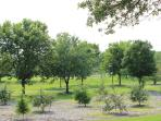Another view of park across the street from home