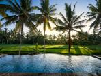 Specutaculer view of rice fields Private Pool/9.5×3m