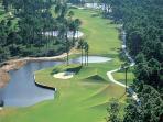 World-class Fazio golf  and tennis in Palmetto Dunes Resort.
