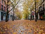 Stroll through Pioneer Square, Seattle's oldest neighborhood!