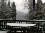 Lake View Deck ( Winter View)
