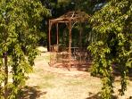 Upper lawn and gazebo-with weeping cherries