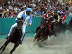 Ferrara Palio (Corsa dei Cavalli)