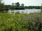 Local lake ideal for swimming, fishing and picnic/Plan de lac ideale pour le picnic, nager, peche