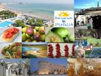 Torre Canne with its long golden beach and the specialties of Valle D' Itria