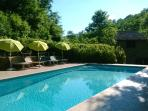 Lovely pool, surrounded by greenery withall day sun