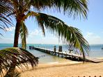 Your Private Pier for Swimming, Snorkeling, Fishing and Pick-up for Tours