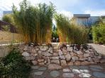 Garden view,