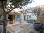Courtyard garden; contemporary outdoor space with olive trees
