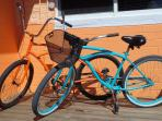 Beach Cruisers for you to enjoy.