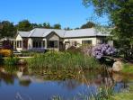 Monet bridge and main pond in springtime