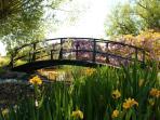Monets bridge