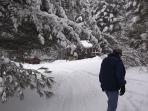 Beautiful day to snow shoe to the cabin