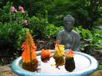 A buddhist feel surrounds the grounds