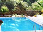 tres grande piscine avec nage a contre courant