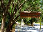 Park Alfonso 13