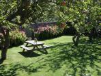Vue supérieure jardin