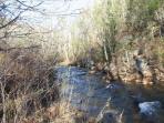Enjoy fishing in the Irish Creek.