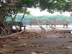 (5) five minute walk to Laguna Cola del Mico (Private deck area)
