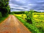la strada privata per arrivare da noi