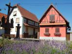 Ohlungen village [ admire some colourful and traditional Alsatian properties ]