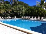 Oversized complex pool with pavers.  Two gas grill and shuffleboard available