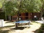 Ping-pong et tennis
