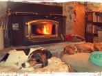Hot dogs in front of the fireplace (pets are welcome free of charge - bring 'em along :)