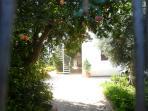 giardino interno 1