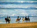 La plage à cheval, autre façon de la découvrir