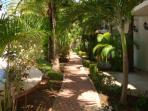 your tropical garden