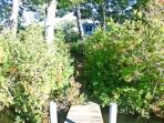 View from dock of path/home