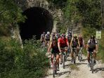 Use sightseeing tour of Istria with bikes