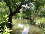 Río Celemín junto a la urbanización