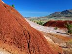 Close up Painted Hills