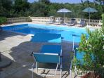 The pool is 10m x 5m, located behind the house