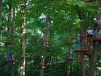 Accrobranche Forest Adventure à St Sauveur Le Vicomte