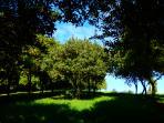The Macadamia Plantation at Riverbend Byron Hinterland Retreat