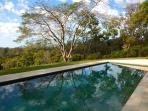 The Amazing Trees at Riverbend reflected by the pool, serenity and beauty.