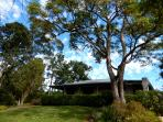 Riverbend Byron Hinterland Retreat nestled high up overlooking the views surrounded by trees