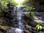 Hidden Waterfalls and Secret Trails lead to our Private Magical places at Riverbend Byron Hinterland