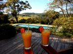 Fresh Juices on the Deck at Riverbend Byron Hinterland Retreat