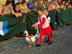 Serra Sant'Abbondio midieval festa