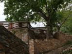 Pelion Kallisti - view from the patio