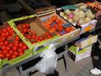 Tomatoes, tomatoes, tomatoes